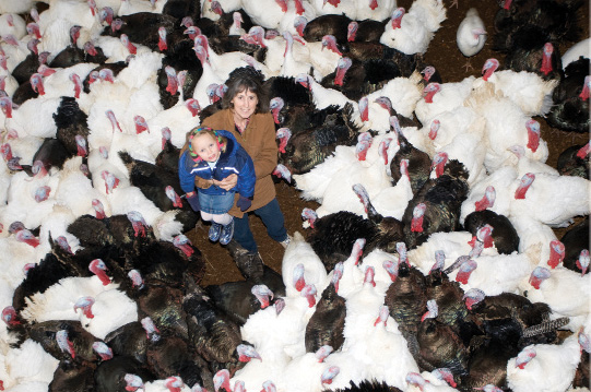Farming runs in the family for Kathy Beaton, above with her granddaughter surrounded by turkeys on their Comox Valley farm.
